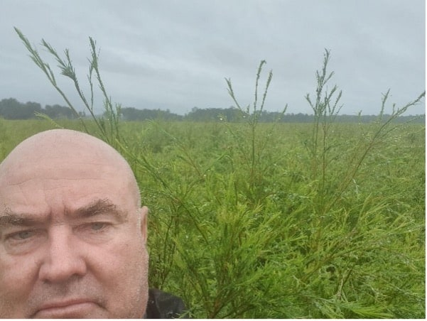 Farm manager and very good looking tea tree crops